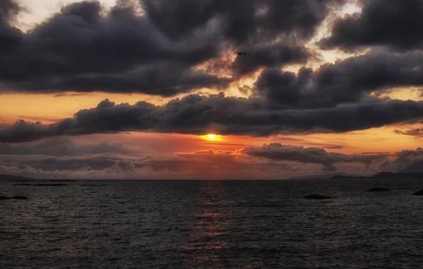 Картинка море, небо, солнце, полет, закат, оранжевый, тучи, океан, птица, Вечер, залив