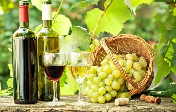Картинка листья, ветки, вино, красное, белое, корзина, бокалы, виноград, пробка, бутылки, штопор