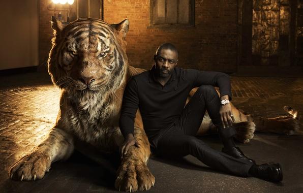 Картинка тигр, актер, Idris Elba, Идрис Эльба, The Jungle Book, озвучка, Книга джунглей, Shere Khan