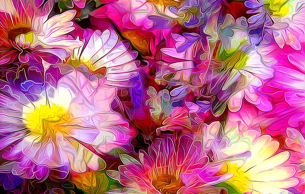 Картинка линии, цветы, лепестки, сад, клумба
