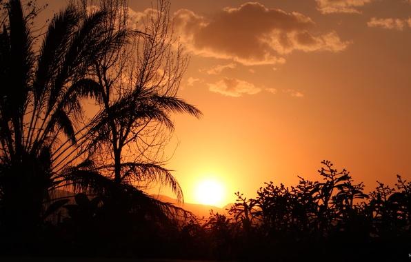 summer sunset landscape wallpaper - photo #22