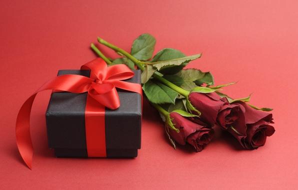 Картинка любовь, цветы, подарок, романтика, розы, red, romantic, gift, roses