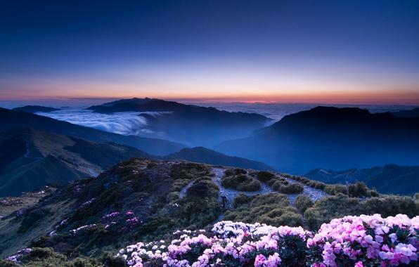 Картинка небо, закат, цветы, горы, оранжевый, холмы, вид, высота, Вечер, дымка, розовые, синее