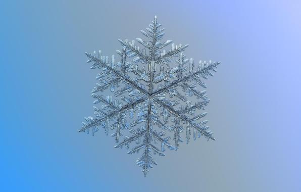Картинка макро, фон, узор, снежинка