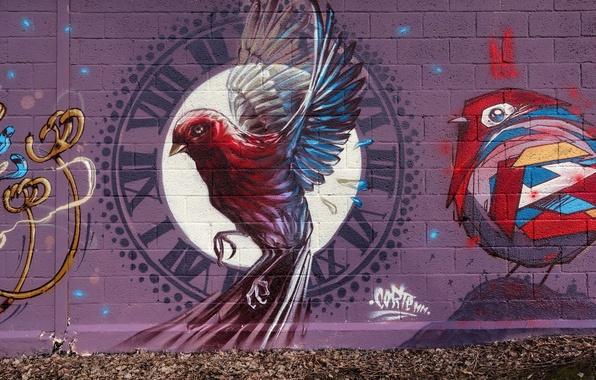 Картинка улица, забор, графити