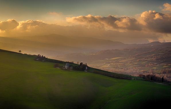 Картинка grass, tree, morning, fog, hills, sunrise, mist