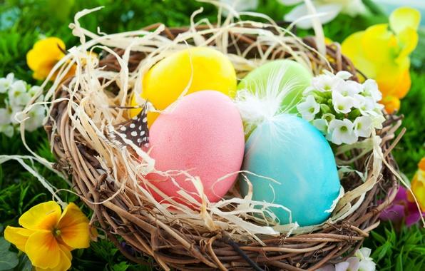 Картинка яйца, пасха, гнездо, flowers, spring, eggs, easter, basket, nest