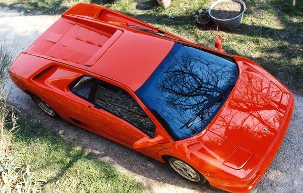 Картинка красный, Lamborghini, Diablo