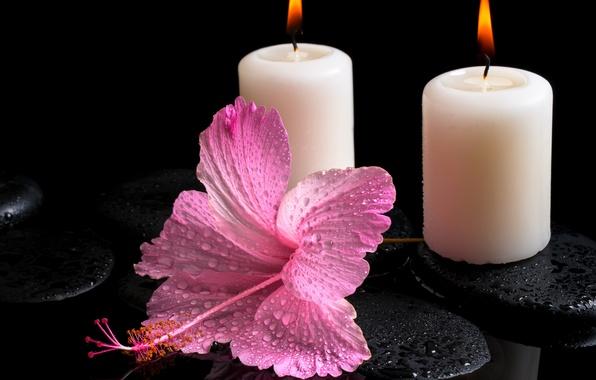 Картинка цветок, вода, капли, свечи, гибискус, спа камни