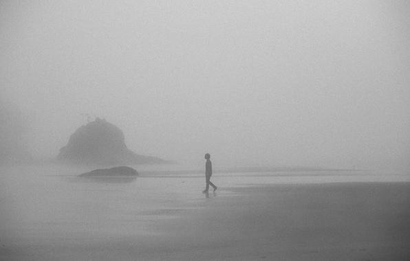 Картинка misty, beach, rocks, fog, boy, foggy, mist, walking