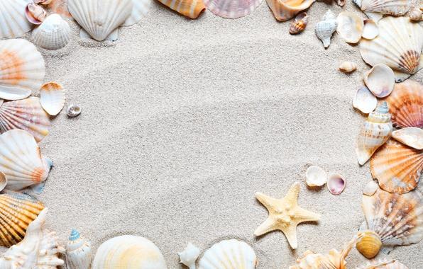 Картинка песок, пляж, рамка, ракушки, sand, starfish, seashells