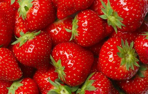 Картинка макро, ягоды, клубника, красные, много