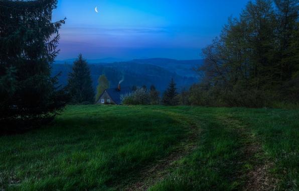 Картинка небо, трава, деревья, природа, луна, дым, дорожка, домик