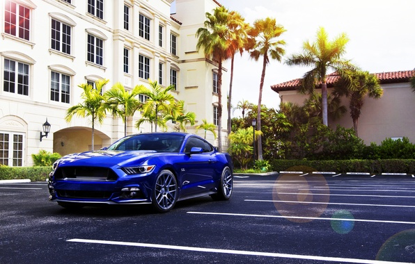 Картинка Mustang, Ford, Muscle, Car, Blue, Front, Sun, Summer, Wheels, 2015, Velgen