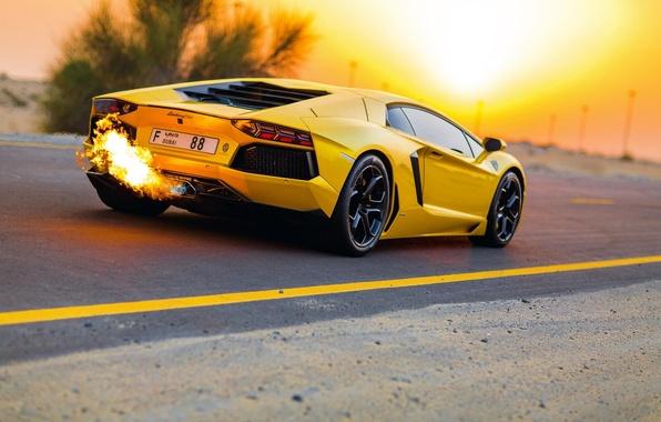 Картинка Дорога, Желтый, Lamborghini, Ламборджини, Dubai, Yellow, LP700-4, Aventador, Авентадор