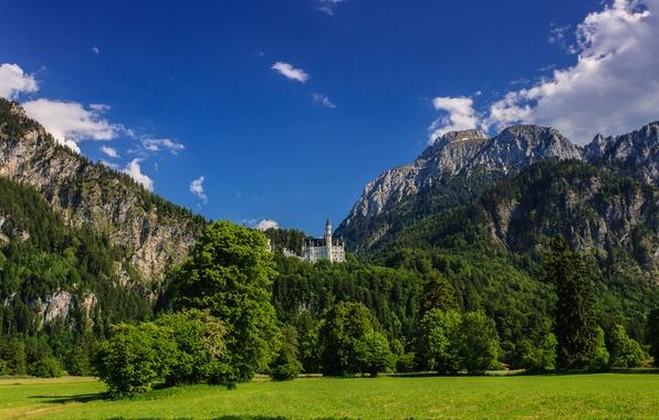 Картинка деревья, горы, Германия, Бавария, луг, Germany, Bavaria, Neuschwanstein Castle, Замок Нойшванштайн