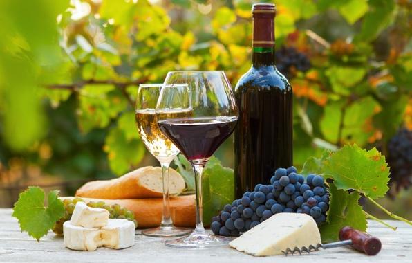 Картинка вино, красное, белое, бутылка, сыр, бокалы, хлеб, виноград, багет, штопор