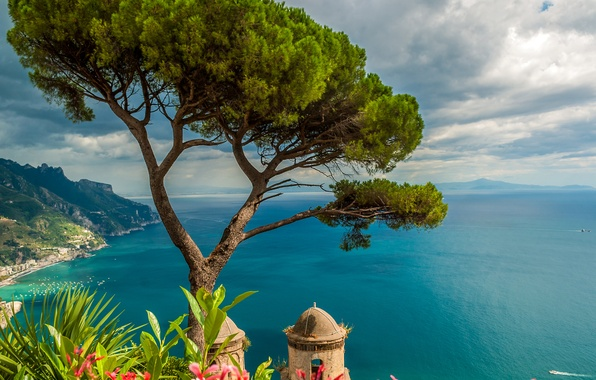 Картинка море, небо, облака, цветы, горы, дерево, побережье, высота, горизонт, Италия, солнечно, вид сверху, Ravello