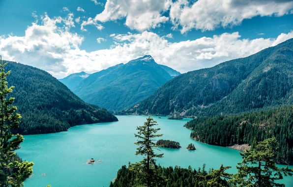 Картинка лес, небо, облака, деревья, горы, озеро, скалы, США, Washington, Ross Lake
