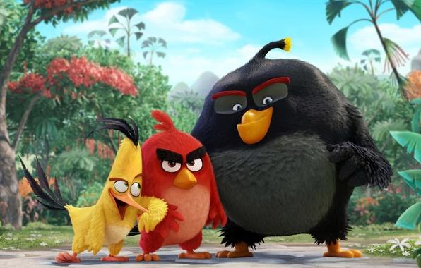 Картинка cinema, animation, red, Red, game, black, yellow, smile, flowers, birds, cartoon, movie, series, film, cute, …