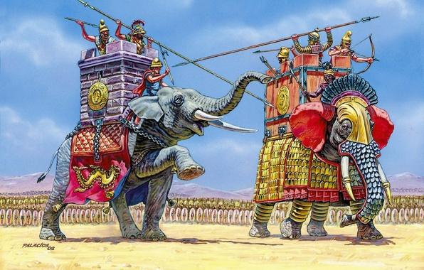 Картинка слон, воины, армии, экипаж, индийский, североафриканский лесной слон., армий, перед битвой каждая сторона выдвинула, на …