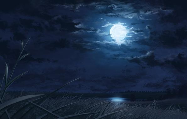 Картинка трава, облака, ночь, река, арт, нарисованный пейзаж