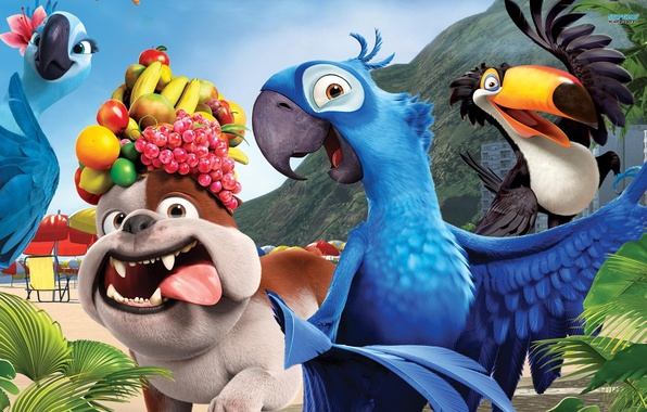 Картинка собака, попугаи, фрукты, рио, rio, Мультфильм