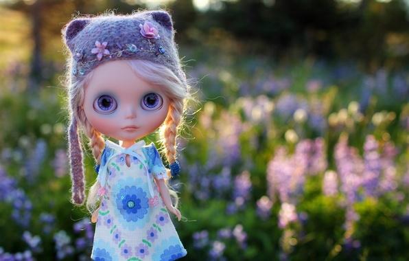 Картинка поле, трава, шапка, игрушка, кукла, косички, шапочка