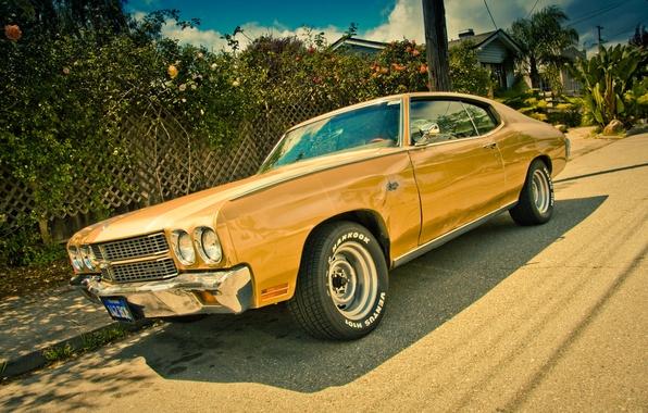 Картинка Chevrolet, мускул кар, Chevelle, Chevrolet Chevelle