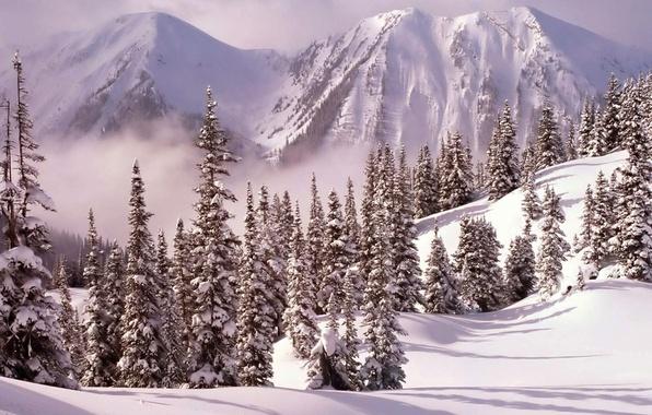 Картинка снег, деревья, горы, елки, Зима