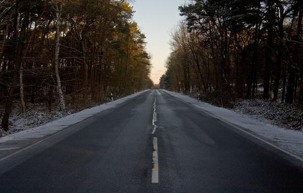 Картинка Зима, Дорога, Лес, Знак, Разметка