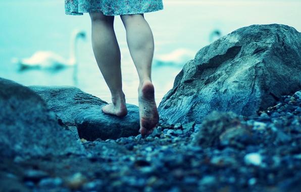 Картинка вода, природа, озеро, река, камни, фон, ситуации, голубой, обои, ноги, настроения, лебеди, wallpapers, пятки, плтье
