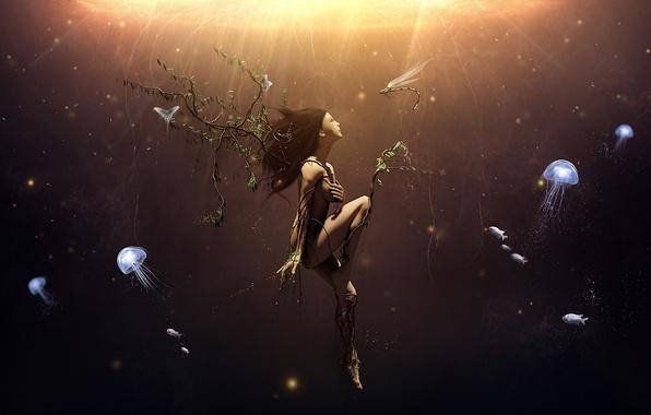 Картинка девушка, бабочки, ветки, корни, дерево, ветви, сюрреализм, стрекоза, арт, медузы, под водой