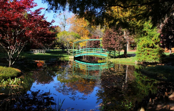 Картинка фото, Природа, Деревья, Река, Пруд, Парк, США, Мосты, Ball Ground, Gibbs Gardens