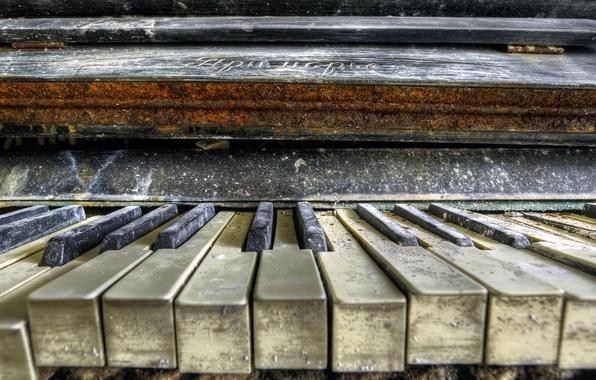 Макро музыка обои фото картинки