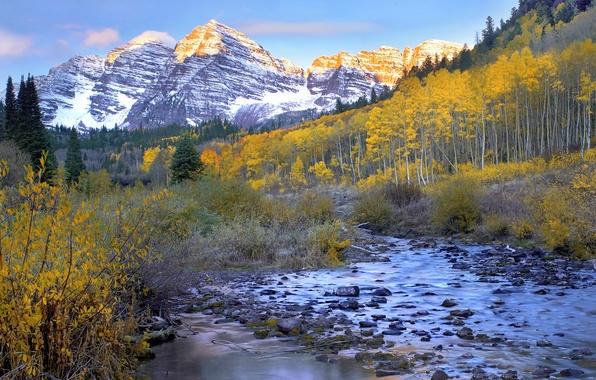 Картинка осень, лес, небо, листья, облака, снег, деревья, горы, река, ручей, камни, кусты