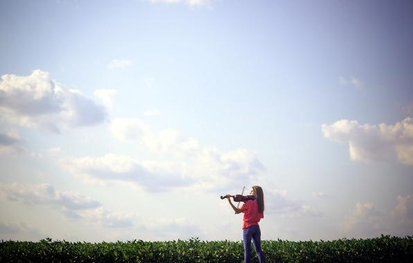 Картинка поле, девушка, музыка, скрипка