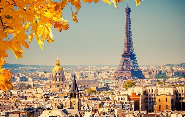 Фото обои осень, листья, город, фон, Франция, Париж, вид, здания, дома, желтые, крыши, панорама, Эйфелева башня, Paris, ...