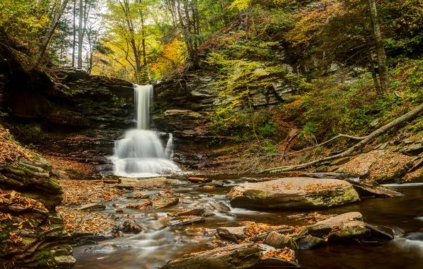 Картинка осень, лес, река, камни, водопад, Пенсильвания, Pennsylvania, Sheldon Reynolds Falls, Ricketts Glen State Park