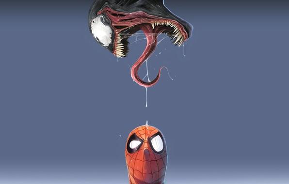Картинка spider-man, синий фон, Venom