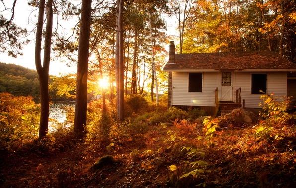 Картинка осень, лес, солнце, деревья, пейзаж, закат, вилла, дома, Природа, house, forest, Nature, архитектура, trees, landscape, …