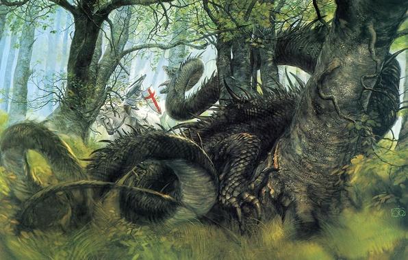 Картинка лес, фентези, дракон, рыцарь, George and the Dragon, John Howe Saint