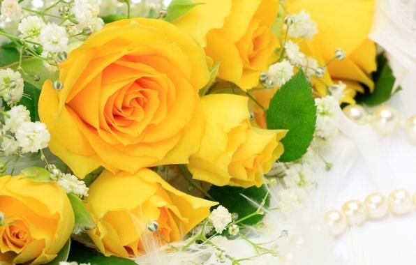 Картинка цветок, цветы, розы, букет, желтые, лепестки, жемчуг, бусы, бутоны, красивые, жёлтые, жемчужина