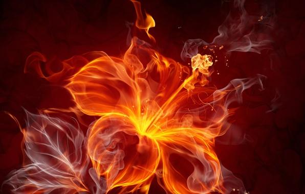 Картинка цветок, абстракция, огонь