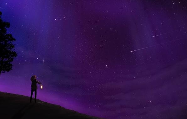 Картинка небо, звезды, деревья, ночь, человек, арт, фонарь