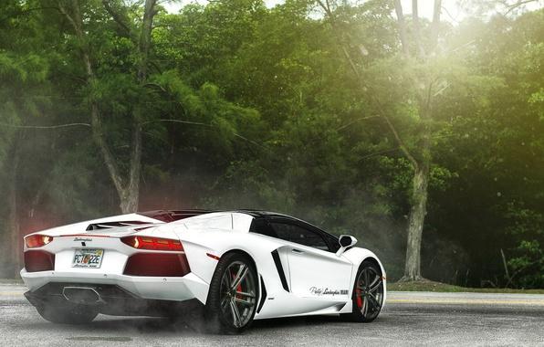 Картинка white, supercar, ламборгини, lamborghini aventador