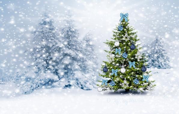 Картинка зима, лес, снег, елка, Рождество, Новый год, forest, Christmas, winter, snow, tree, Design by Marika