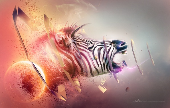 Картинка red, white, black, blue, orange, abstraction, purple, zebra, gray