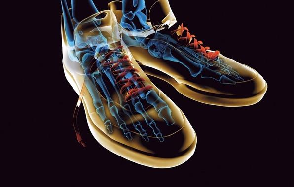Картинка обувь, кеды, скелет, шнурки