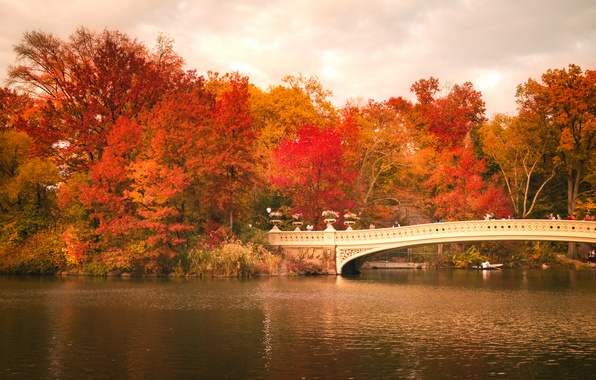 Картинка осень, листья, деревья, отражение, люди, лодка, Нью-Йорк, зеркало, Центральный парк, Соединенные Штаты, Bow Bridge